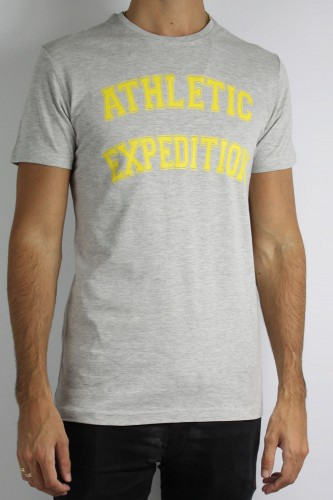 T-Shirt Solid Briley gris